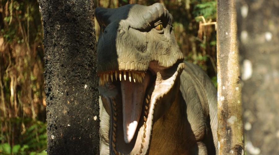 vale_dos_dinossauros_01.jpg