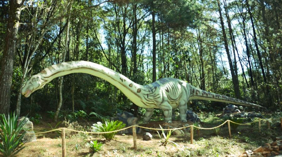 vale_dos_dinossauros_02.jpg